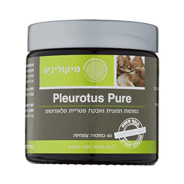 פלאורוטוס פיור – מיקוליביה