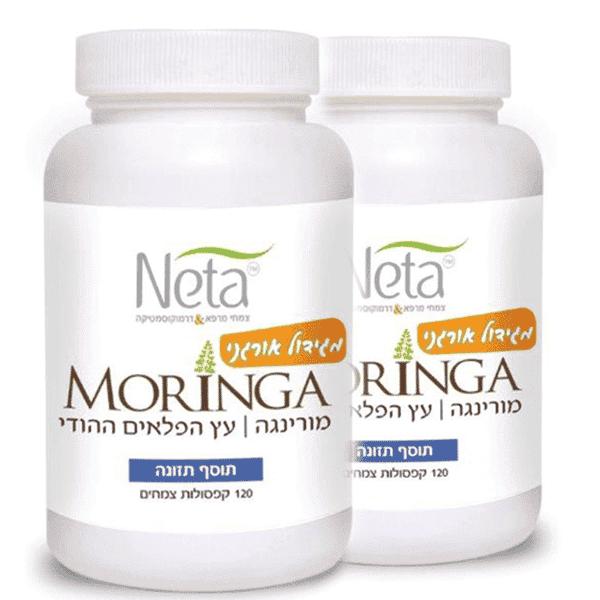 מורינגה מגידול אורגני – עץ הפלאים ההודי – זוג – נטע – Neta